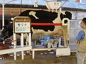2004日本動物園之旅第二天:DSC05372.JPG