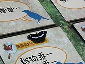 0728台北行:蝴蝶