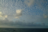 加勒比海:0313 (6).JPG