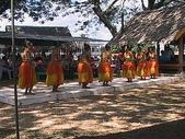 帛琉:DSC00260.JPG