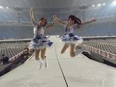 東京ドーム 1830mの梦:1789490942.jpg
