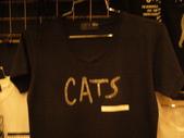 日本行DAY3*四季劇團<cats>*:1913192634.jpg