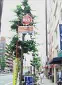 日本行DAY2*庭園之旅*:1416664381.jpg