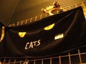 日本行DAY3*四季劇團<cats>*:1913192636.jpg