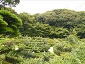 日本行DAY2*庭園之旅*:1416664368.jpg