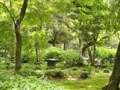 日本行DAY2*庭園之旅*:1416664375.jpg