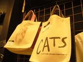 日本行DAY3*四季劇團<cats>*:1913192637.jpg