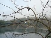 *DAY4*陶瓷之都-景徳鎮:1850720288.jpg