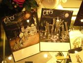 日本行DAY3*四季劇團<cats>*:1913192641.jpg