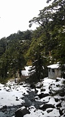 101年春節奇萊山冰雪天地0920608383:IMAG0068.jpg