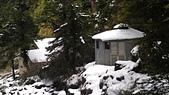101年春節奇萊山冰雪天地0920608383:IMAG0069.jpg