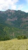 山山山:DSC04238.JPG