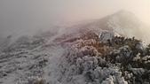 101年春節奇萊山冰雪天地0920608383:IMAG0078.jpg