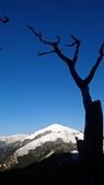 101年春節奇萊山冰雪天地0920608383:IMAG0086.jpg