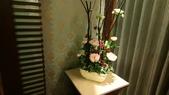 桃園&蓁愛汽車旅館:DSC_0686.JPG