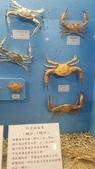 澎湖遊:1566833428735.jpg