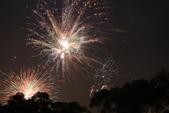 2010  happy  new  year:1612147861.jpg