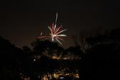 2010  happy  new  year:1612147865.jpg