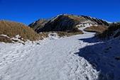 2014-02-18 合歡山雪季:20140201803.JPG