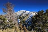 2014-02-18 合歡山雪季:20140201804.JPG