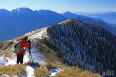 2014-02-18 合歡山雪季:IMG_8437.JPG