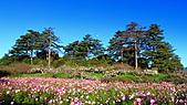 2010-09-25 福壽山農場:DPP_0001.JPG
