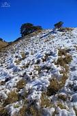2014-02-18 合歡山雪季:20140201807.JPG