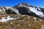 2014-02-18 合歡山雪季:20140201808.JPG