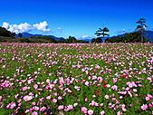 2010-09-25 福壽山農場:DPP_0005.JPG
