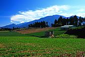 2010-09-25 福壽山農場:DPP_0006.JPG