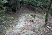 105(2016)年4月30日-金面山親山步道:AA2016-0430-金面山親山步道06.jpg
