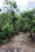 105(2016)年4月30日-金面山親山步道:AA2016-0430-金面山親山步道16.jpg