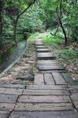 105(2016)年4月30日-金面山親山步道:AA2016-0430-金面山親山步道01.jpg