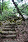 105(2016)年4月30日-金面山親山步道:AA2016-0430-金面山親山步道09.jpg