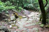 105(2016)年4月30日-金面山親山步道:AA2016-0430-金面山親山步道11.jpg