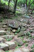 105(2016)年4月30日-金面山親山步道:AA2016-0430-金面山親山步道15.jpg