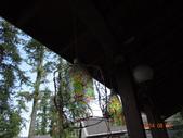 20140823溪頭新明山:DSC06724.JPG