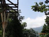 20140823溪頭新明山:DSC06742.JPG
