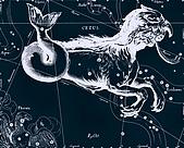 西洋星座手繪線描圖:Cetus   -   Кит.JPG