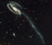 從來沒想過宇宙這麼美:heic0206a.jpg