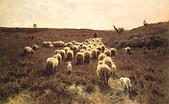 世界傳世名畫:回归的羊群.jpg