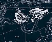 西洋星座手繪線描圖:Crater, Corvus   -   Чаша, Ворон.JPG