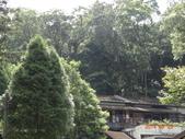 20140823溪頭新明山:DSC06756.JPG