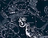西洋星座手繪線描圖:Delphinus, Eqvuleus   -   Дельфин, Жеребенок (Малый Ð%9A