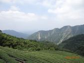 20140823溪頭新明山:DSC06802.JPG