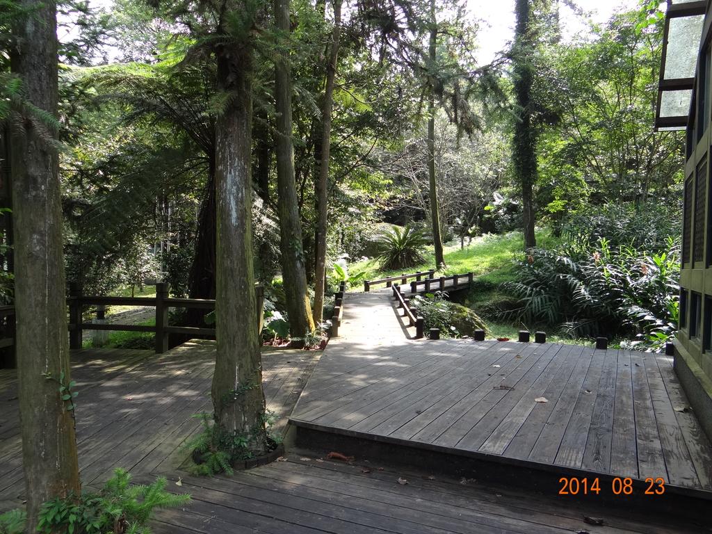 20140823溪頭新明山:DSC06709.JPG