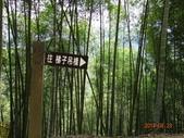 20140823溪頭新明山:DSC06799.JPG