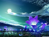 日本知名畫家KAGAYA-夢‧星空:dreamsky11.jpg