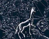西洋星座手繪線描圖:Camelopardalus   -   Жираф.JPG