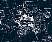 西洋星座手繪線描圖:Canes Venatici   -   Гончие Псы.JPG